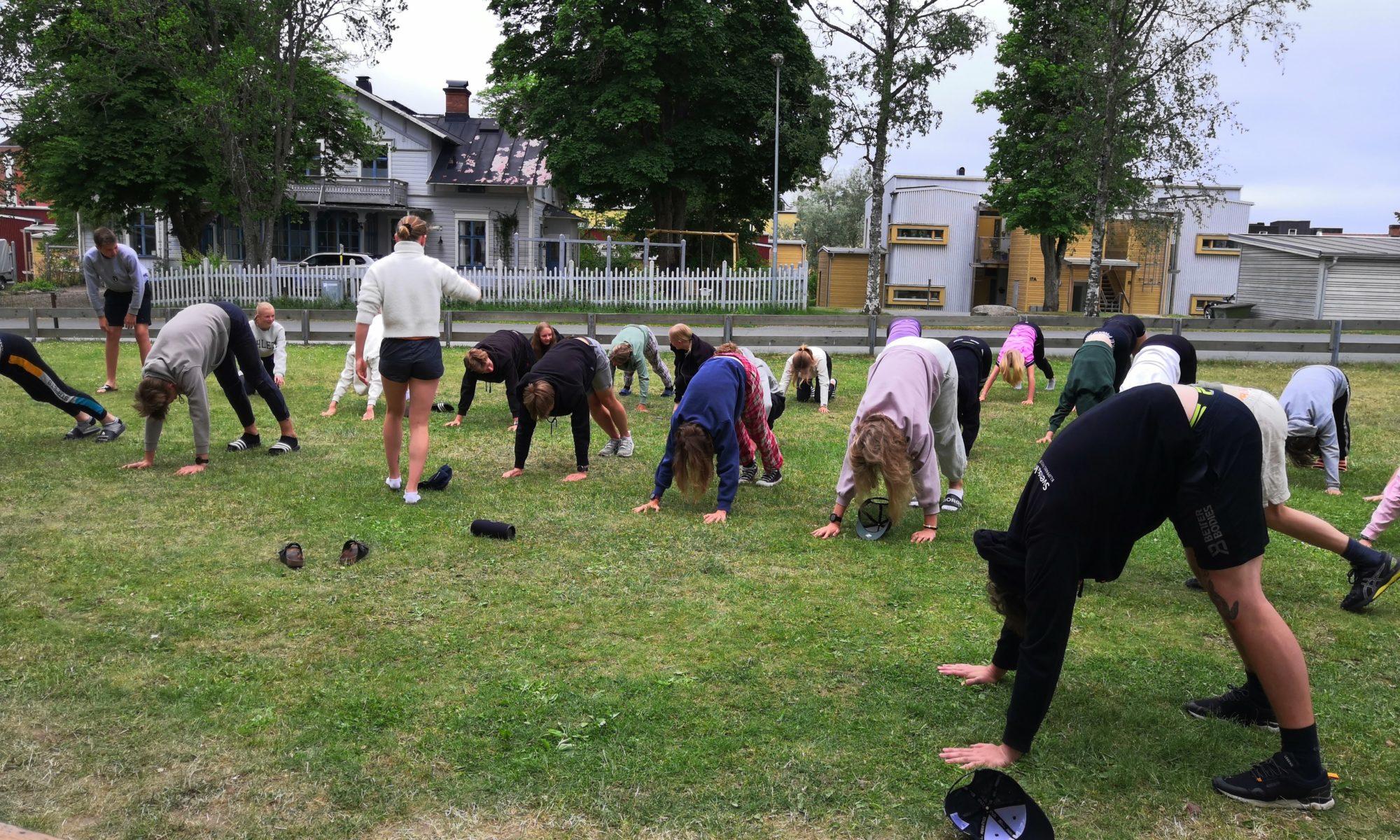 En grupp människor står i yoga position ute på en gräsmatta.